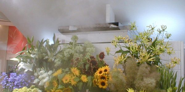 Fresh flowers with ultrasonic FT humidification equipment from Aire Fresh Systems
